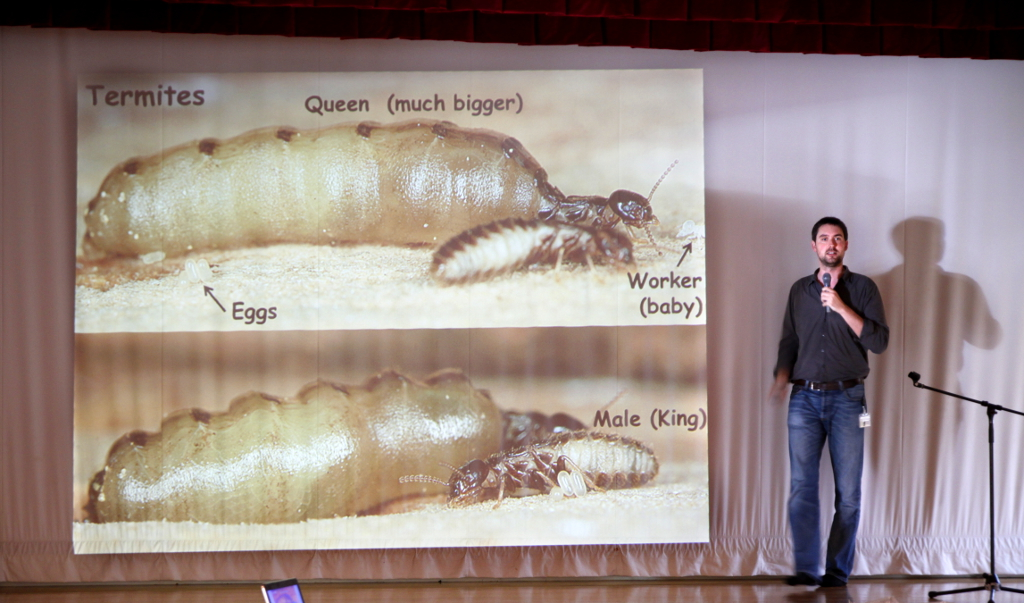 Benoit Guénard giving a presentation on social insects. Photo: OIST.
