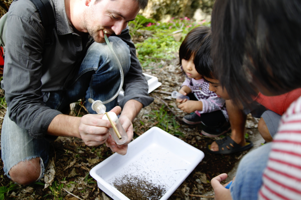 Benoit Guénard and his team, collecting ants. Photo: OIST.